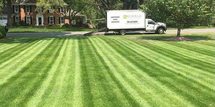 A home lawn with regular mowing in Arlington, Virginia.